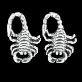 Stud Earrings  FSE022