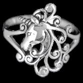 Ring FSR019