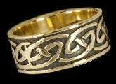 Ring CR46L-B
