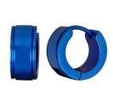Earrings EDE031