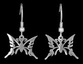 Earrings EDE033