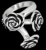 Ring EDR103