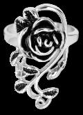 Ring EDR116