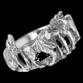 Ring FSR068