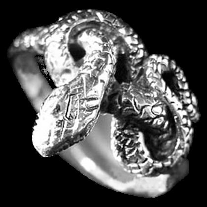 Ring AR24