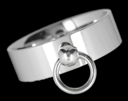 Ring EDR099